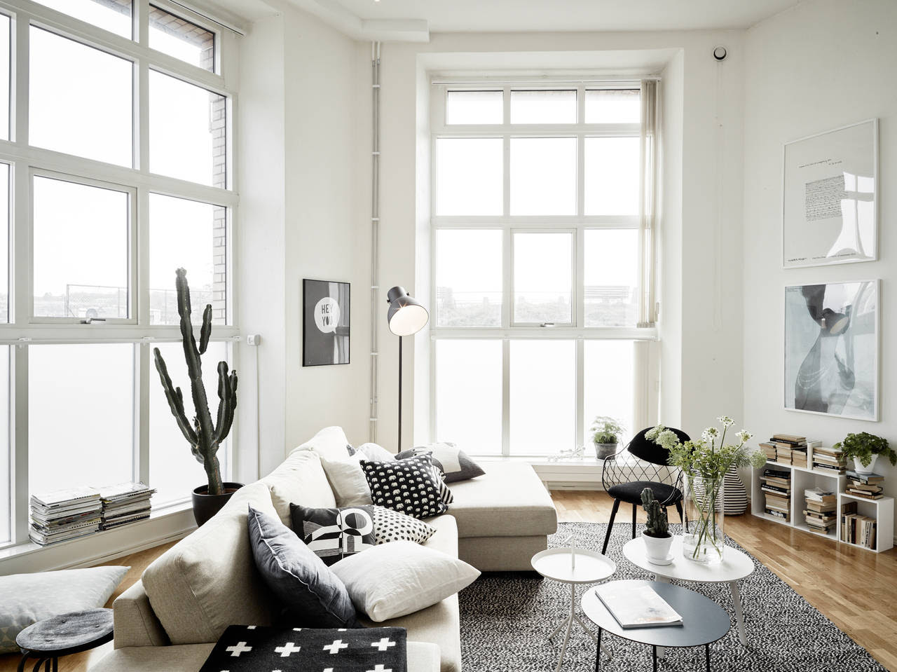 ON TREND SUCCULENTS AND CACTI FOR INTERIORS Vkvvisuals Blog